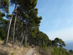 AG-sentiero della Salvia